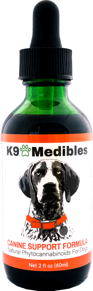 CBD for Dogs Anxiety - Treatment For Anxious Dogs - Dog