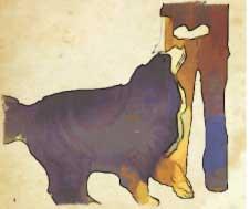 luring-sit-dog-training-sm