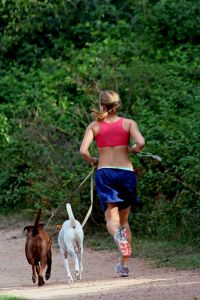 Person jogging with their dogs