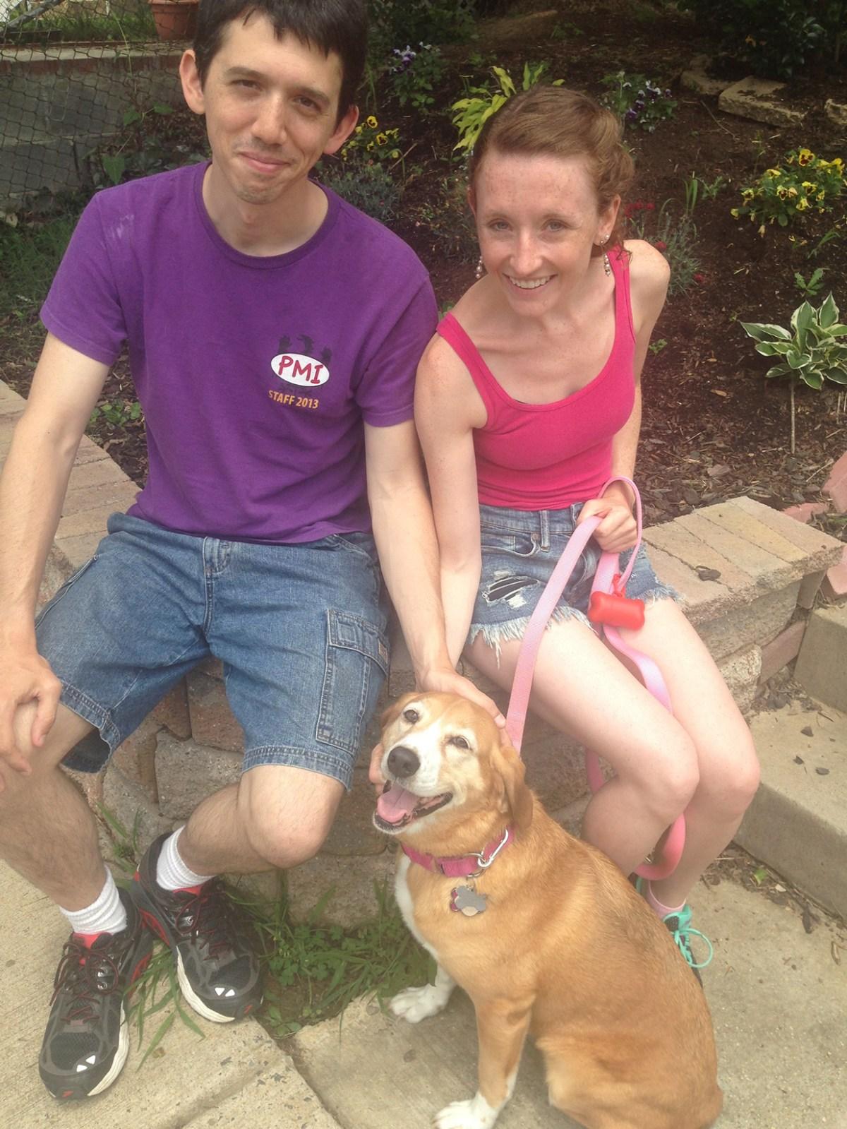 lab-beagle-dog-training Alexandria, VA