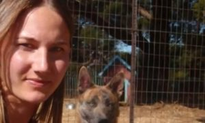 saving a condemned dog (3)