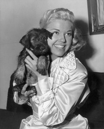 Doris Day and Mrs Mike - source IMDB