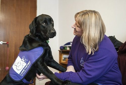 How Winning The Lottery Allowed Me To Fulfil My Canine Charity Dream
