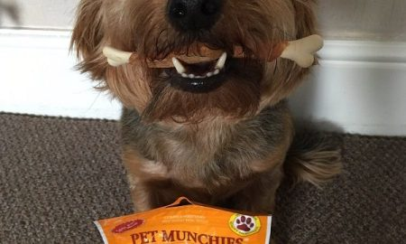 Buttons with Pet Munchies (1)