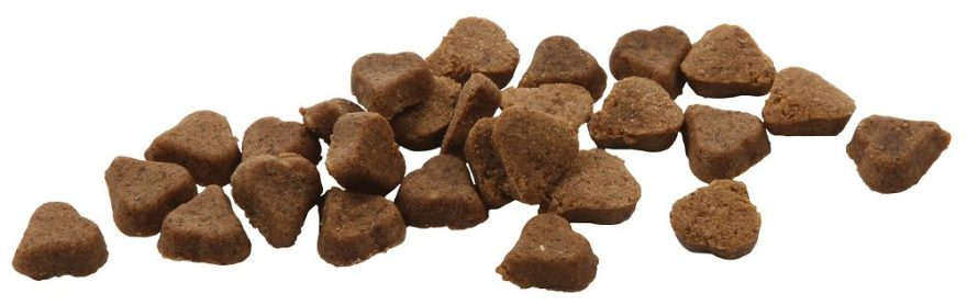 Best Dog Treats: 5 Healthy Treats We Think Your Dogs Will Love