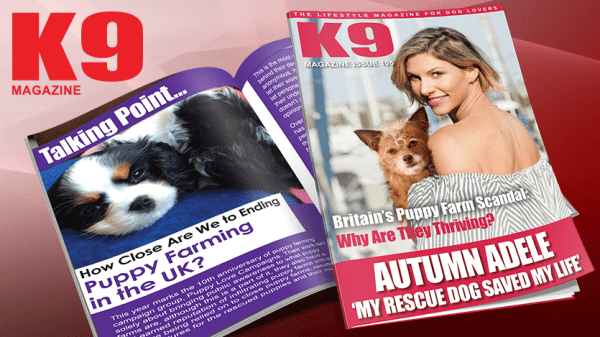 K9 Magazine Issue 105