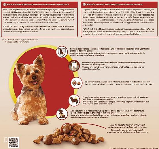 How Much Food Should I Feed My Dog?