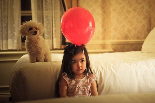 dog child photo
