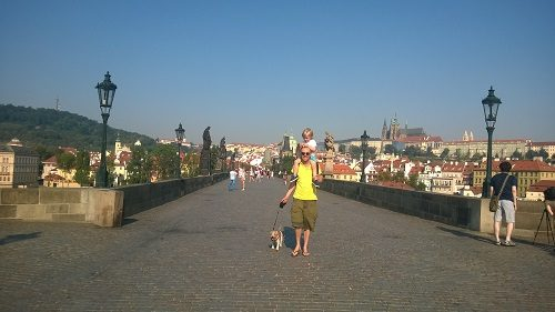 One Man & His Dog: How Easy Is It to Travel Around Europe With Your Dog?