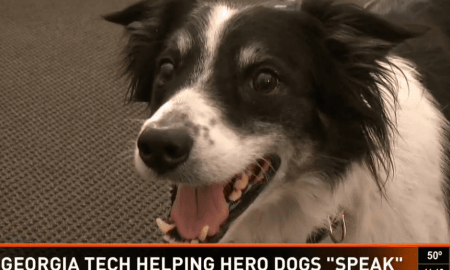 tech-helps-dogs-to-speak