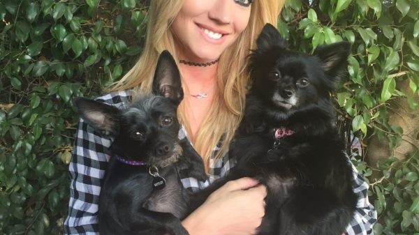 Guitar Star Nita Strauss Introduces Her Dogs & Talks Idols With K9 Magazine