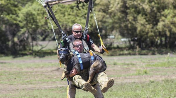 Meet the World's First Sky-Diving Anti-Poaching Dog