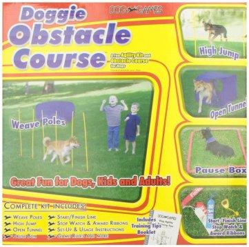 dog agility training course