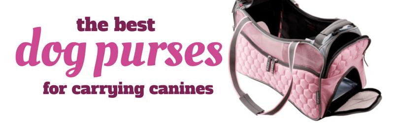 best dog carrier purses