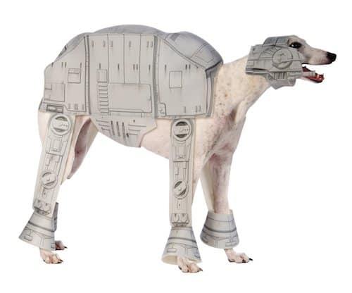 funniest dog halloween costumes