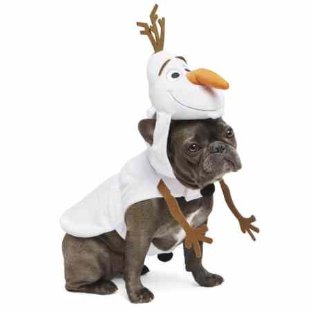 greatest dog halloween costumes