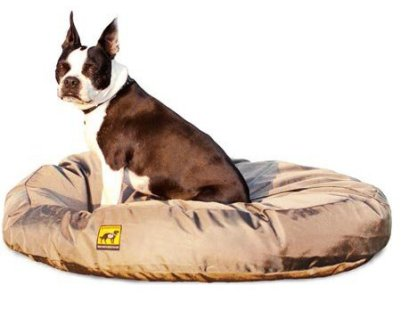 chew proof dog bed