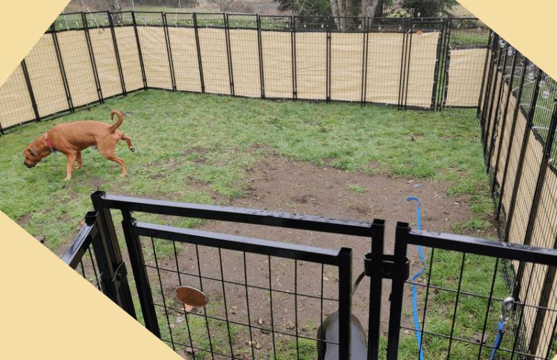 9 diy dog fence plans blueprints for
