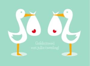 Tekst geboortekaartje tweeling