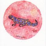 Tarot-Totemdierenorakel, Salamander