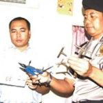 Polisi KP3 Gagalkan Penyelundupan Mobil