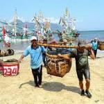 Minapolitan Muncar, Bandar Ikan Laut Terbesar se-Jawa