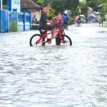 Diguyur Hujan 24 Jam, Tiga Desa di Muncar Kembali Terendam Banjir
