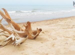 Pantai Nepa / Dok.Pri (Firmansyah)