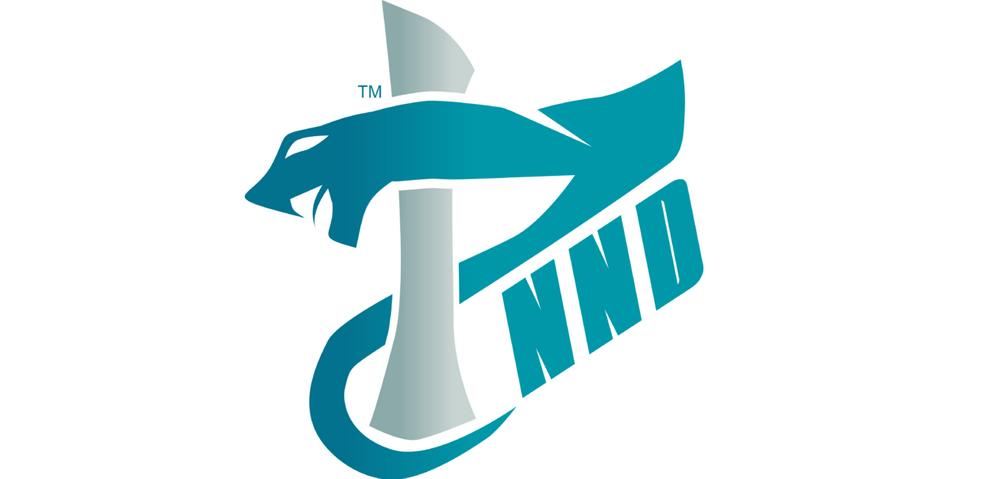 The Prime.NND - Team & atlet esports terbaik