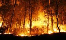 Permalink ke Kurangi Kabut Asap, BNPB Modifikasi Cuaca Besok