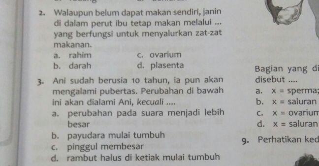Salah satu pertanyaan tentang reproduksi manusia pada buku pelajaran siswa Sekolah Dasar (SD).