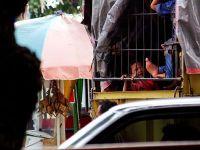 Keceriaan itu tampak dari sang bocah dibalik truk barang, usai bermain bersama sanak keluarganya di pantai Jalan Samudera, Kota Padang, Sumatera Barat. Demi menghabiskan musim libur Idulfitri 1438 Hijriah. Rabu (28/6/2017). Source: https://www.instagram.com/tanharimage/