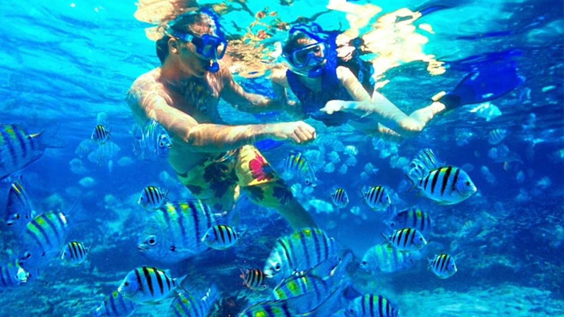 snorkeling-di-pulau-Suwarnadwipa-padang/lihat.co.id