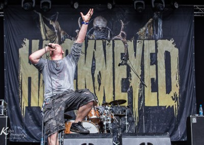 HACKNEYED – MetalDays 2016
