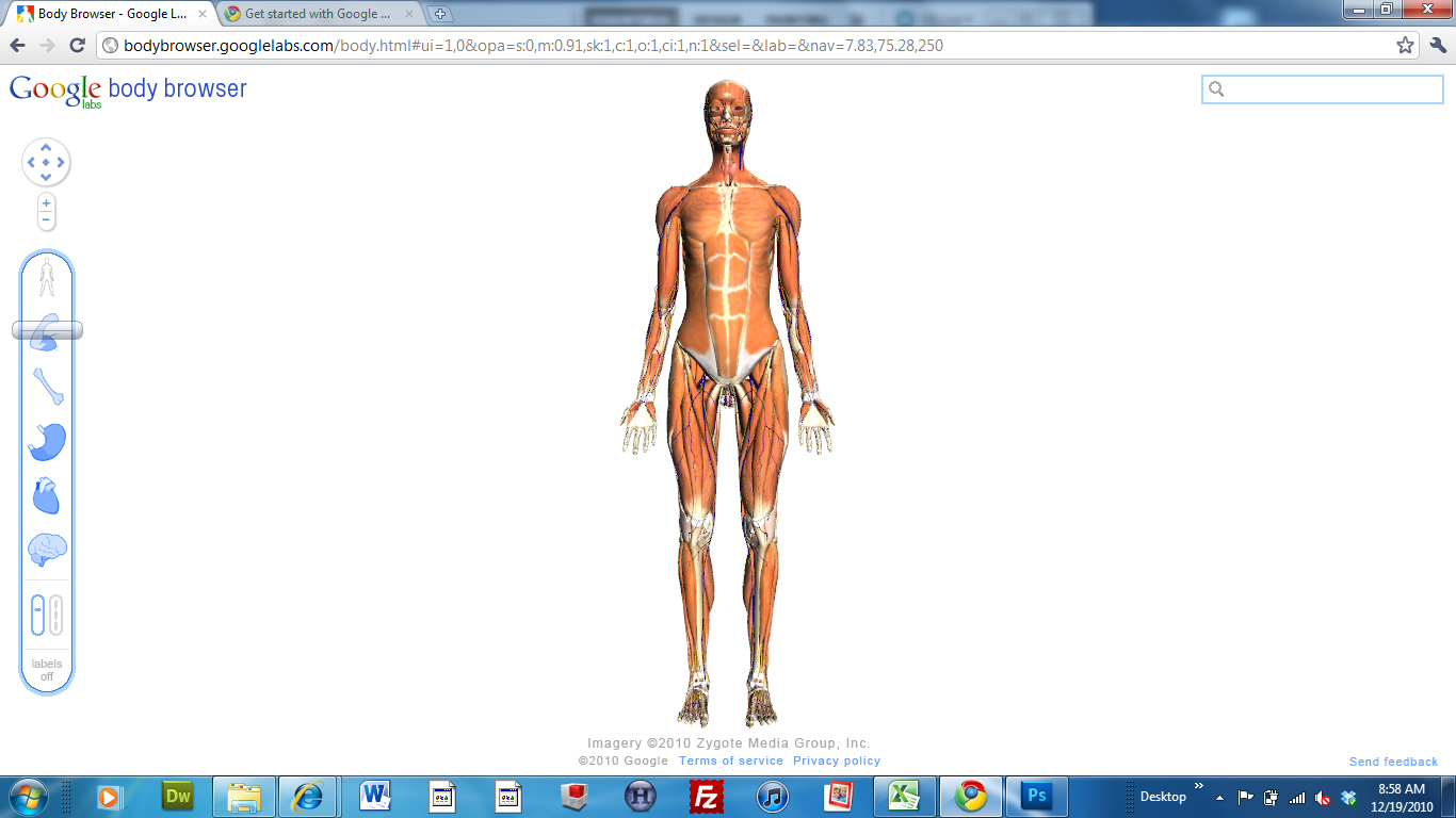 google body browser |