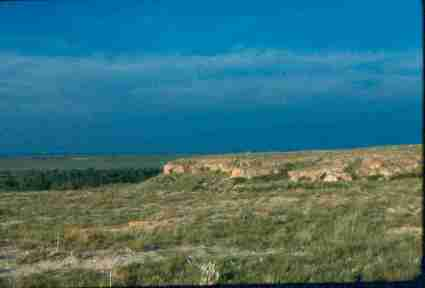 Cimarron National Grasslands (CNG) Field Trip Agenda