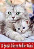 subat dunya kediler gunu capsleri
