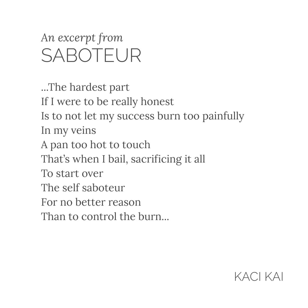 Saboteur by Kaci Kai