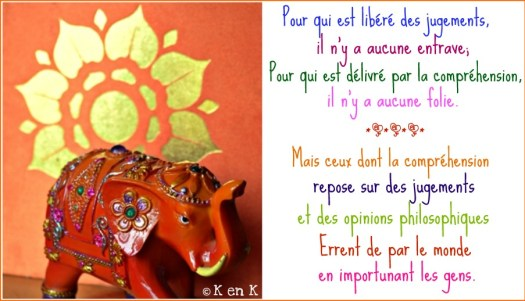 theme 24 nourriture citation de bouddha