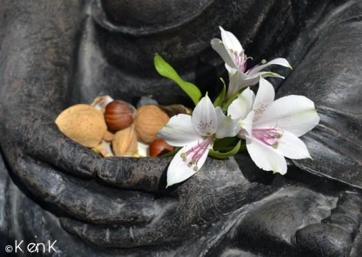 theme 24 Bouddha et offrandes