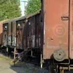 transport-train-bétaillères-wagon