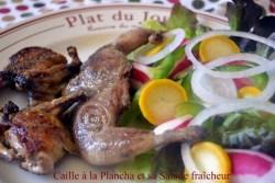 Recette de caille cuite à la plancha avec sa salade fraîcheur aux courgettes crues