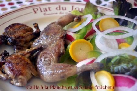 Viande - Caille cuite à la plancha en crapaudine et Salade fraîcheur avec des courgettes crues