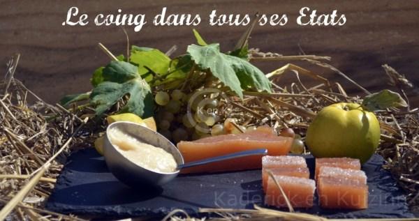 recette-sorbet coings-desserts-blog