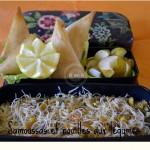 légumes-recette-bento-cuisine