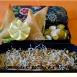 legume-recette-cuisine-blog