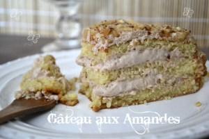 Dessert- recette du gâteau aux amandes avec une crème au praliné