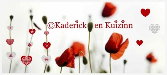 Bannière du blog avec des coquelicots, des coeurs en rouge et gris