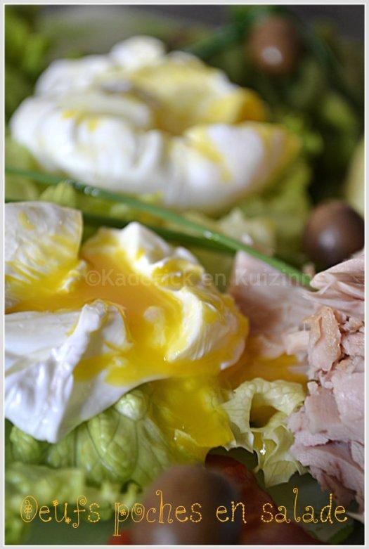 Présentation oeufs pochés en salade façon niçoise pour un repas complet