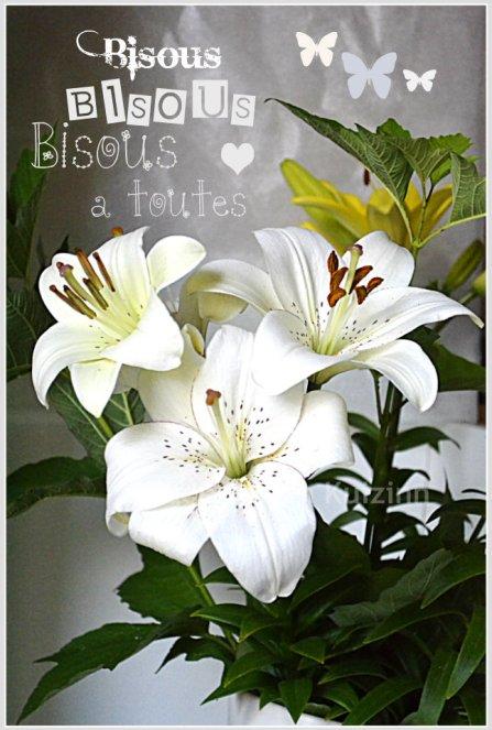 Bouquet de Lys pour dire merci avec pleins de bisous